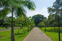 Viharamahadevi el parque a la ciudad de Colombo de Sri Lanka imagen de archivo libre de regalías