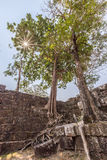 vihear preah的寺庙 免版税库存照片