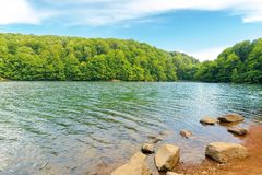 Vihorlat lake slovakia. Body of water among beech forest in mountains. popular destination in eastern europe. sunny summer weather with clouds on the sky stock photos