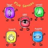 Vijf Betekenissenpictogram Stock Illustratie