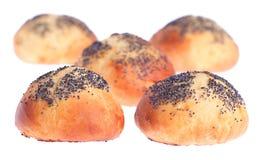 Vijf broodjes die met papaverzaden worden bestrooid stock fotografie