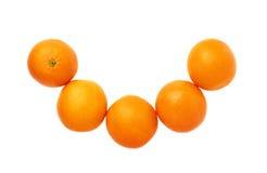 Vijf die sinaasappelenvruchten samenstelling over wordt geïsoleerd Royalty-vrije Stock Foto's