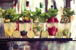 Vijf glazen van mojito met vruchten Fruit Alcoholische Cocktails royalty-vrije stock foto's