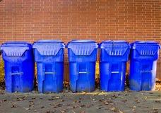 Vijf Heldere Blauwe KringloopBakken Stock Afbeelding