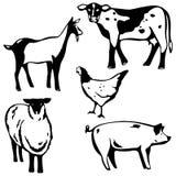 Vijf landbouwbedrijfdieren Stock Afbeelding