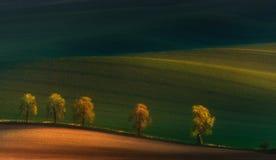 Vijf pelgrims Laconiek een de lente-zomer landschap met een zonovergoten steeg van kastanjebomen, een vallei met mooie schaduwen  Royalty-vrije Stock Fotografie