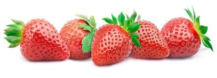 Vijf rijpe geïsoleerde aardbeien Royalty-vrije Stock Afbeeldingen