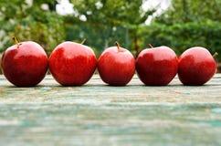 Vijf rode appelen op houten groene bruine oude textuuroppervlakte sluiten omhoog Appelen op vage aardachtergrond Stock Fotografie