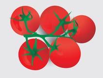 Vijf rode tomaten op een tak Stock Afbeeldingen