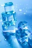 Vijf smeltende ijsblokjes Royalty-vrije Stock Foto