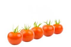 Vijf Tomaten 4 Royalty-vrije Stock Foto's