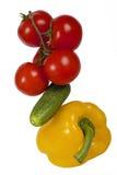 Tomaten op een tak en komkommers en peper op geïsoleerd Royalty-vrije Stock Fotografie