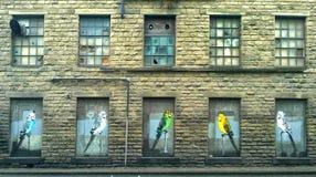 Vijf vogels royalty-vrije stock afbeelding