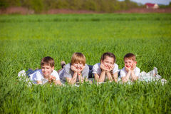 Vijf vrienden die op gras liggen Stock Foto