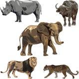 Vijf wilde dieren van Afrika Stock Foto