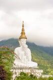 Vijf wit Boedha beeld Stock Foto