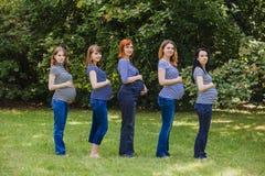Vijf zwangere vrouwen in dezelfde kleren openlucht Stock Foto