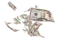Vijftig dollarsbankbiljetten vector illustratie