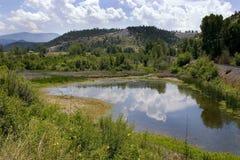 Vijver, Bergen en Groen in Helena Montana Stock Foto's