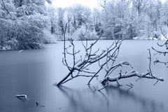 Vijver bij de winter royalty-vrije stock afbeeldingen