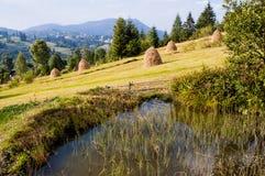 Vijver in de Bergen van de Karpaten royalty-vrije stock afbeeldingen
