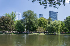 Vijver in de Openbare Tuin en gebouwen in Boston Royalty-vrije Stock Foto