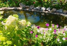 Vijver in de zomerwoonplaats onder bomen en bloemen Royalty-vrije Stock Foto