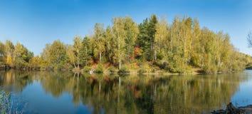 Vijver in een bos in de herfst Stock Afbeelding