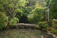 Vijver in een Japanse tuin Stock Fotografie