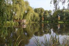 Vijver en bomen bij het Orunia-Park Royalty-vrije Stock Foto's