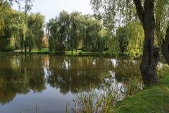 Vijver en bomen bij het Orunia-Park Stock Foto
