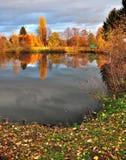 Vijver en bomen rond hem in de herfst royalty-vrije stock foto