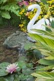 Vijver en tuin Stock Fotografie