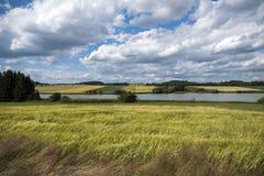 Vijver en wolken in sommer Royalty-vrije Stock Fotografie