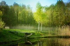 Vijver in groen platteland stock afbeeldingen
