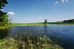 Vijver in het de lenteplatteland royalty-vrije stock afbeelding