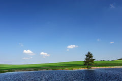Vijver in het de zomerplatteland royalty-vrije stock afbeeldingen