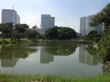 Vijver in het park naast wolkenkrabbers Stock Afbeelding