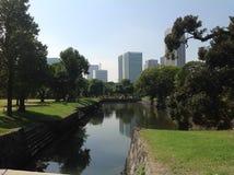 Vijver in het park naast wolkenkrabbers Stock Fotografie