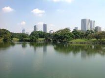 Vijver in het park naast wolkenkrabbers Royalty-vrije Stock Foto