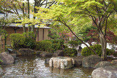 Vijver in Japanse zentuin royalty-vrije stock foto's