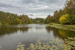 Vijver in Kuzminki-Park, grijze stormachtige hemel, de herfstlandschap Royalty-vrije Stock Afbeeldingen