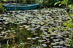 Vijver met boot en waterlelies stock foto
