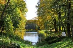 Vijver met eenden in de herfstpark Oleksandriya in Bila Tserkva, de Oekraïne stock foto