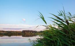 Vijver in platteland in de herfst bij zonsondergang Royalty-vrije Stock Afbeelding
