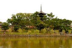 Vijver Sarusawa -sarusawa-ike Stock Fotografie