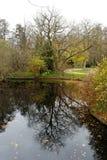 Vijver in Tiergarten, Berlijn Royalty-vrije Stock Foto's