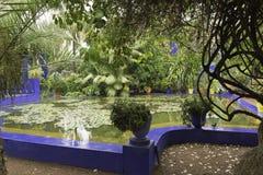 Vijver in tuin majorelle op een regenachtige dag royalty-vrije stock foto's