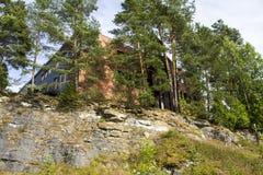 Vik Норвегия Стоковая Фотография RF