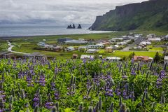Vik in Iceland. Aerial view from hill above Vik i Myrdal village in south part of Iceland stock photo